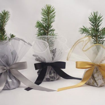 Organza Tree Kit